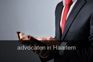 Advocaten in Haarlem